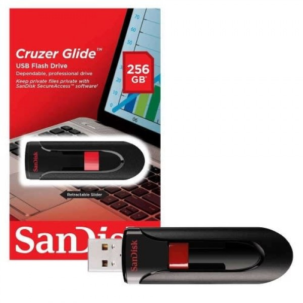 SanDisk 256GB Flash Drive